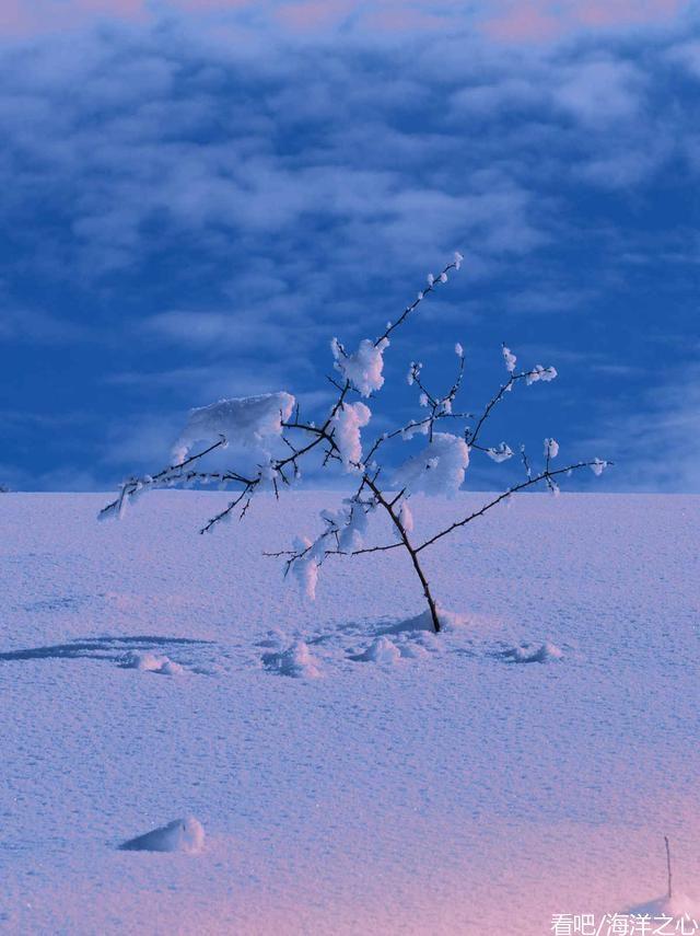 如何记录冰雪世界?摄影高手给出这几招!